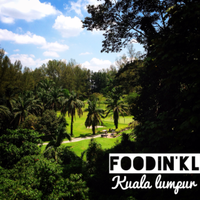Lush jungle backround @ Tamarind Springs